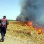 incendies terroristes