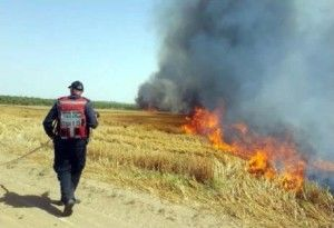 incendies terroristes