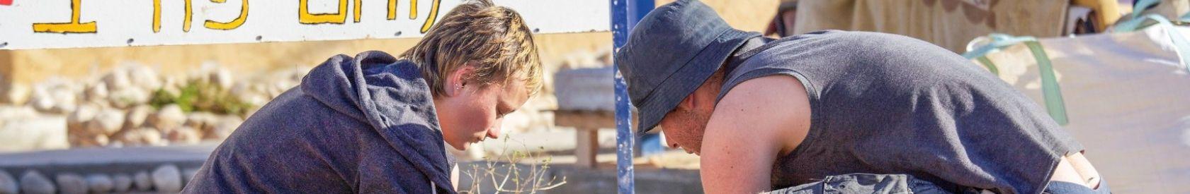 Ecologie : volontaires chrétiens en Israël