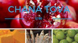 5780 chana Tova